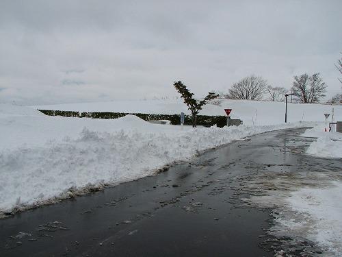 ショベルローダーで除雪された構内