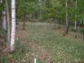 コース一面、落ち葉に覆われるPG場コース