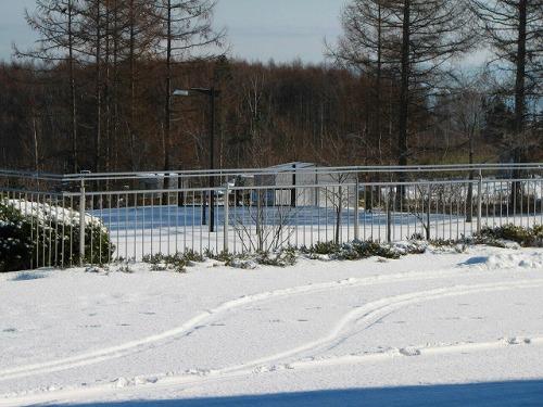 歩くスキーコースは雪不足